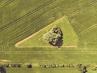dronographica aerial imaging trekant mark field drone luftbilleder droner dronebilleder droneoptagelse natur